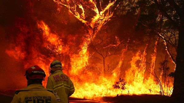 Twitter Users Wanting to Set Up Humble Bundle for the Australian Bushfire Crisis